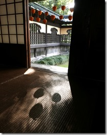 安藤家あんぽ柿 (3)