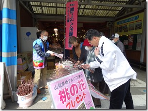 [we saw the sights with peach blossom distribution in center which was Yaizu Hill on Saturday, February 22 and publicized! ]