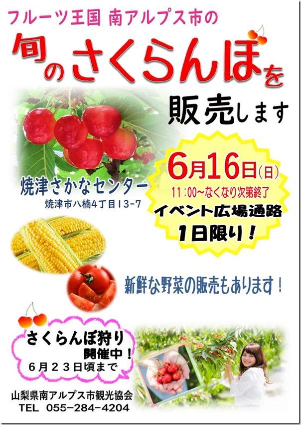 焼津さかなセンターにてさくらんぼ祭りを開催します❣️