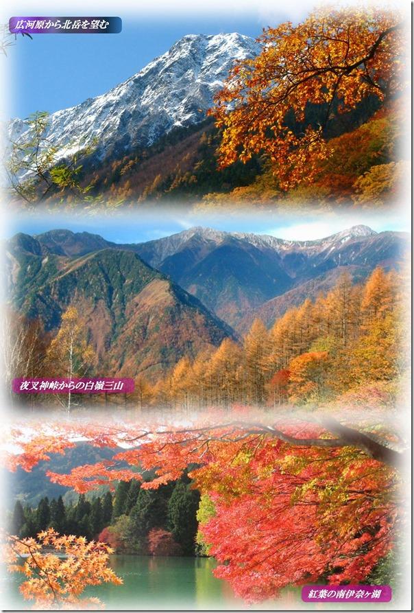 秋の景色新