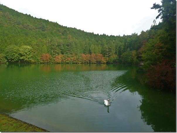伊奈ヶ湖紅葉1016